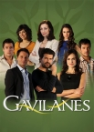 Gavilanes - TV Series - Click to view trailer